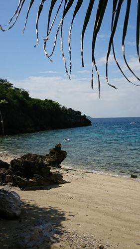 Eco Friendly Resort On A Magnificent Island Philippines